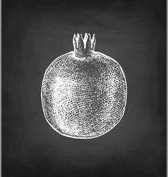 Pomegranate chalk sketch vector