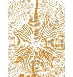 Cross section of tree stump vector