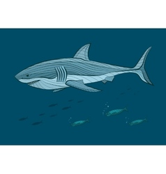 Decorative big white shark in the sea with fish vector image vector image