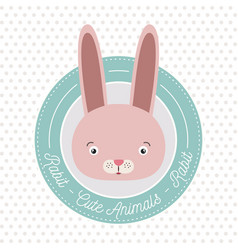 Dotted background with color frame decorative and vector