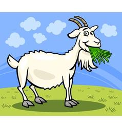 goat farm animal cartoon vector image