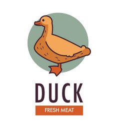 Duck fresh meat commercial logo with domestic bird vector