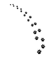 footprints dogs vector image