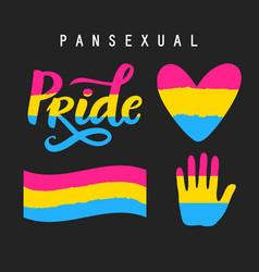 Pansexual movement pride symbols vector