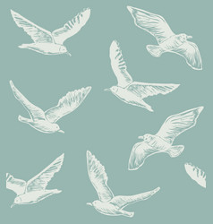 Seamless hand drawn pattern with seagulls vector
