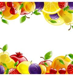 banner of fresh fruit vector image