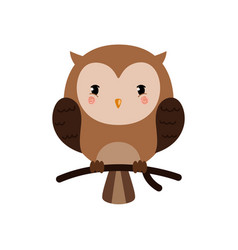 adorable owl character vector image