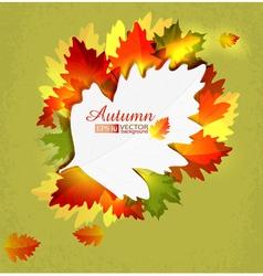 Autumn6 vs vector