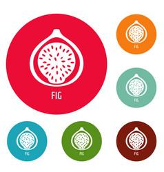 Fig icons circle set vector