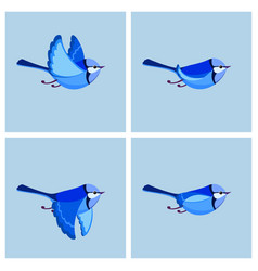 Flying splendid fairy wren male animation sprite vector
