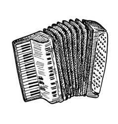 Hand drawn piano accordion vector