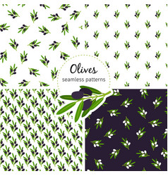 olives pattern seamless collection with green leaf vector image