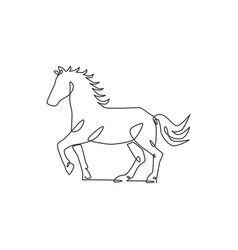 one continuous line drawing wild luxury horse vector image