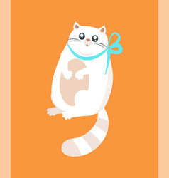 pussy white cat decorated by blue bow tape on neck vector image