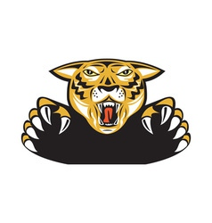 Tiger Head Head Attacking Isolated vector
