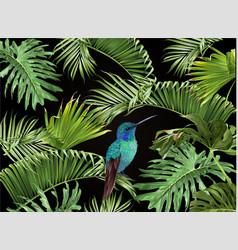 Tropical hummingbird banner vector