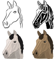 a set of drawings of a horse head vector image