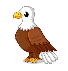 beautiful eagle in cartoon style on a white vector image