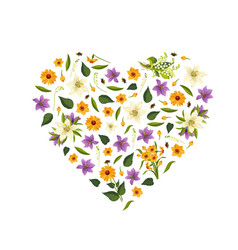 beautiful wild flowers pattern heart shape vector image