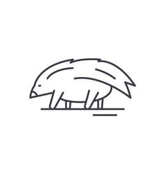 porcupine line icon concept porcupine vector image