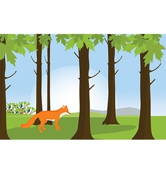 Red fox in forest landscape vector image
