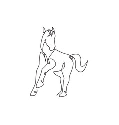 single continuous line drawing elegant horse vector image