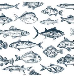 sketch - fish pattern vector image