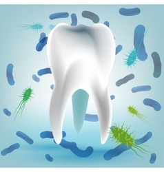 Tooth Hygiene Image vector