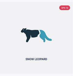 Two color snow leopard icon from animals concept vector