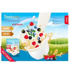 instant oatmeal with strawberry advert concept vector image vector image
