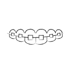 Denture with orthodontics icon vector