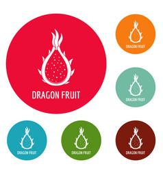 Dragon fruit icons circle set vector
