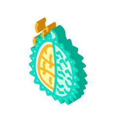 Durian smell isometric icon vector