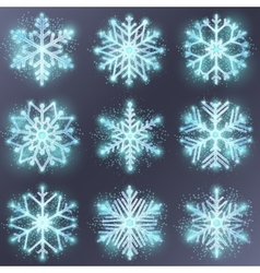 Glitter snowflake vector image