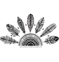 Ornament with feathers vector