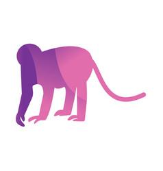 wild monkey animal jungle logo silhouette of vector image