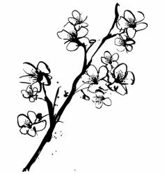 cherry blossom ink illustration vector image vector image