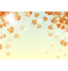 Abstract background of colorful autumn leaves vector