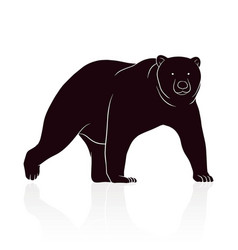 Bear silhouette isolated on white backround vector