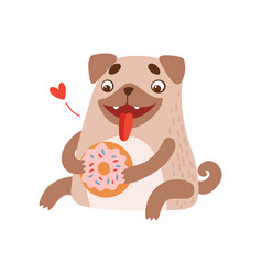 cute pug dog eating donut funny friendly animal vector image