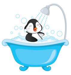 of penguin bathing vector image