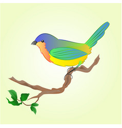 bird on branch spring background vector image vector image