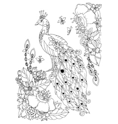Zen Tangle peacock and vector image vector image