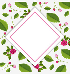 frame template with pink roses vector image