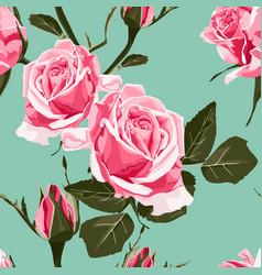 shabchic pink roses vintage pattern vector image