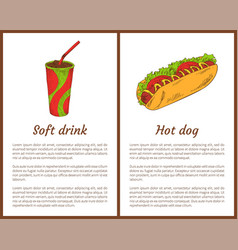 soft drink and hot dog set vector image