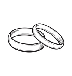 Pair of traditional wedding rings for bride and vector image