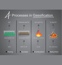 processes in gasification drying pyrolysis vector image