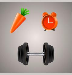set of sport diet vector image