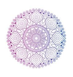 Beautiful mandala design vector